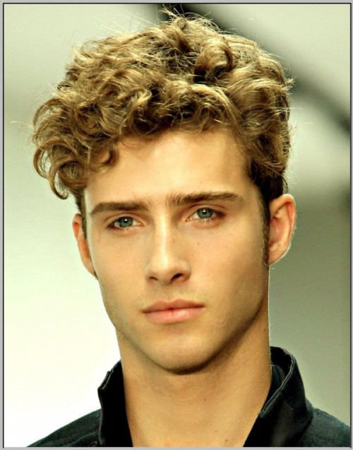 long-hairstyles-for-men-ponytail-long-curly-hair-men-ponytail---viewing-gallery.jpg